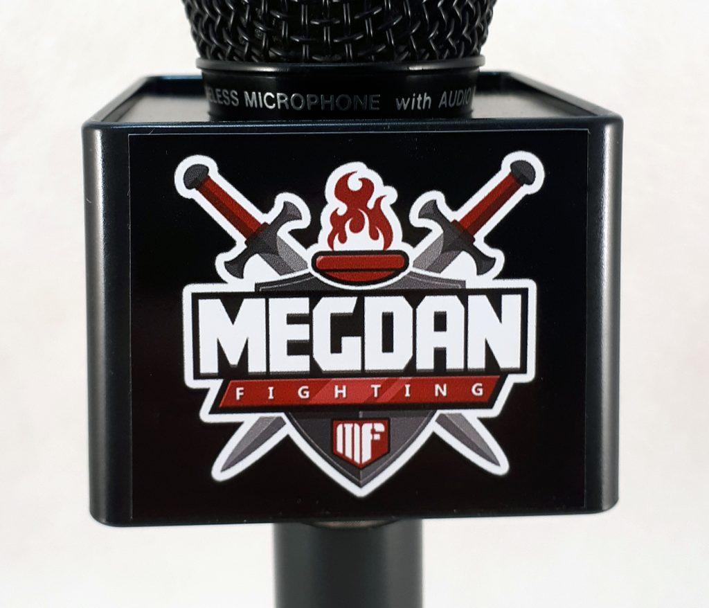 Mic Cube Megdan